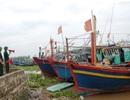Đón bão số 4, Thái Bình cấm biển từ 12h trưa nay
