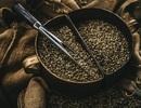 Địa danh nào ở Việt Nam cho ra ly cà phê ngon hàng đầu?