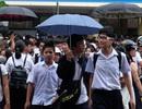 Đà Nẵng: Công nhận điểm 10 Ngoại ngữ cho HS thi vào lớp 10 có chứng chỉ quốc tế