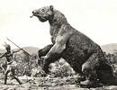 3 quái vật khổng lồ thời tiền sử có thể tồn tại đến ngày nay