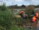 Tá hỏa phát hiện thi thể người đàn ông nổi trên bờ hồ