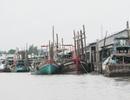 Chi tiền cho hàng chục cán bộ đi nước ngoài học quản lý tàu cá