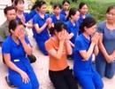 Vụ hàng chục cô giáo quỳ gối để xin được tiếp tục dạy trẻ: Kỷ luật 5 cán bộ liên quan
