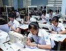 Nghệ An: Còn hơn 2.000 lao động đang cư trú bất hợp pháp tại Hàn Quốc