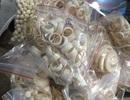Khởi tố đối tượng mua bán trang sức làm bằng ngà voi
