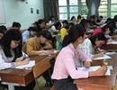 TPHCM: Hiệu trưởng nắm quyền tuyển dụng giáo viên