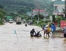 Mưa lũ gây thiệt hại nặng nề ở các tỉnh miền núi phía Bắc
