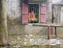 Hà Nội: Nước rút, trẻ em người già lở loét da sau nửa tháng ngâm trong nước
