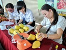 Làm gì để khởi nghiệp tại Đồng bằng sông Cửu Long có hiệu quả?