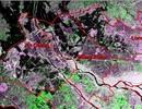 Phát hiện lũ ĐBSCL diễn biến phức tạp nhờ ảnh vệ tinh viễn thám radar