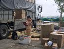 Vận chuyển hơn 1,2 tấn da đà điểu không giấy tờ vào TP.Hồ Chí Minh tiêu thụ