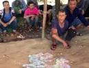 Khởi tố hàng loạt đối tượng đánh bạc trên đường lên chùa Hương