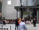 Sợ người Việt làm mất trật tự, Apple Store ở Singapore liên tục cảnh báo