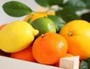 Lợi ích sức khỏe của vỏ trái cây họ cam quýt