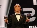 Giải FIFA The Best 2018: HLV Park Hang Seo và Văn Quyết bỏ phiếu cho ai?