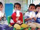 """Hà Nội: """"Chốt"""" đơn vị trúng thầu sữa học đường sau 45 ngày"""