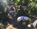 Bộ đội vượt đường lầy chở gạo tiếp tế cho vùng dân bị cô lập sau mưa lũ