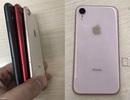 Bằng chứng iPhone 9 sẽ được trang bị 2 SIM, dành riêng cho thị trường châu Á