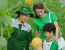 Tận mắt khám phá hành trình nông sản từ nông trường tới mâm cơm gia đình