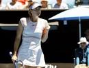 """Australian Open: """"Búp bê"""" Sharapova, Djokovic trở lại ấn tượng"""