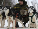 """""""Chiến binh"""" 4 chân trong Lực lượng Vũ trang Nga"""