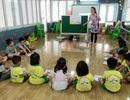 Học tập Hàn Quốc, Dongsim Việt Nam phát triển giáo dục mầm non tại Việt Nam