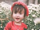 """Bộ ảnh """"không thể không yêu"""" của bé gái 3 tuổi Nghệ An"""