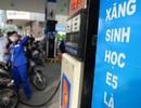 Phó Thủ tướng: Theo dõi lượng tiêu thụ 2 loại xăng để quyết việc công bố giá cơ sở