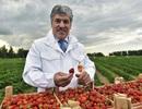 Ông chủ nông trang thách thức Tổng thống Putin trong bầu cử