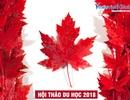 Du học Canada: Lộ trình thẳng tiến Đại học - Rộng mở định cư