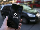 Uber B.V kiện Cục Thuế TPHCM: Tòa không thụ lý
