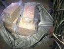 Trộm cắp hơn 1 nghìn kíp mìn của công ty than, một đối tượng bị bắt