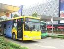 Sắp có xe buýt từ sân bay Tân Sơn Nhất đi Vũng Tàu