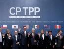 Hiệp định CPTPP có hiệu lực: Thuế ô tô, xăng dầu hơn 10 năm nữa mới được xoá bỏ