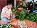 Cận Tết: Làng nghề bánh chưng tất bật, thu cả trăm triệu đồng