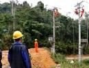 Tết này đồng bào vùng biên giới Quảng Nam đã có điện