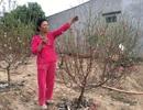 """Nữ """"nông dân"""" mang đào Bắc vào Cao Nguyên trồng, thu hàng trăm triệu đồng mỗi dịp tết"""