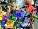 Chợ Đà Nẵng 30 Tết: Thịt, cá tăng giá nhẹ; hoa quả cúng giao thừa đắt giá