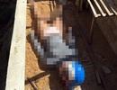 Thiếu nữ bị sát hại khi đi ship gà cho khách chiều 30 Tết