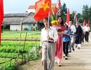Về Trà Quế xem hội Cầu Bông và làm nông dân