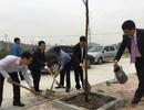 Chủ tịch Sóc Sơn kêu gọi nhà nhà hăng hái trồng rừng