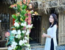 Ninh Bình: Thung lũng hoa 15ha khoe sắc