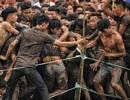 Tái diễn cảnh tranh cướp bạo lực, Hội Phết Hiền Quan 2019 bị dừng tổ chức