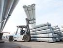Thị phần các sản phẩm thép Hòa Phát tăng cao trong tháng 1
