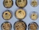 Đang đi dạo bỗng vớ hộp tiền vàng giá gần trăm triệu đồng