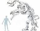 Hóa thạch con lười khổng lồ tiết lộ hoàn cảnh sống trước khi tuyệt chủng
