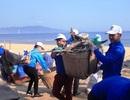 Bình Định: Công an, bộ đội, thanh niên, học sinh nhặt rác làm sạch biển