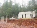 Vụ đào ao nuôi tôm phá luôn rừng phòng hộ: Xem xét trách nhiệm những người liên quan