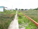 Cà Mau: Công dân tố cáo sai phạm đất đai, Chủ tịch huyện bị kiểm điểm