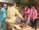 Thả 2 con trăn đất nặng gần 80kg về Vườn quốc gia Tràm Chim